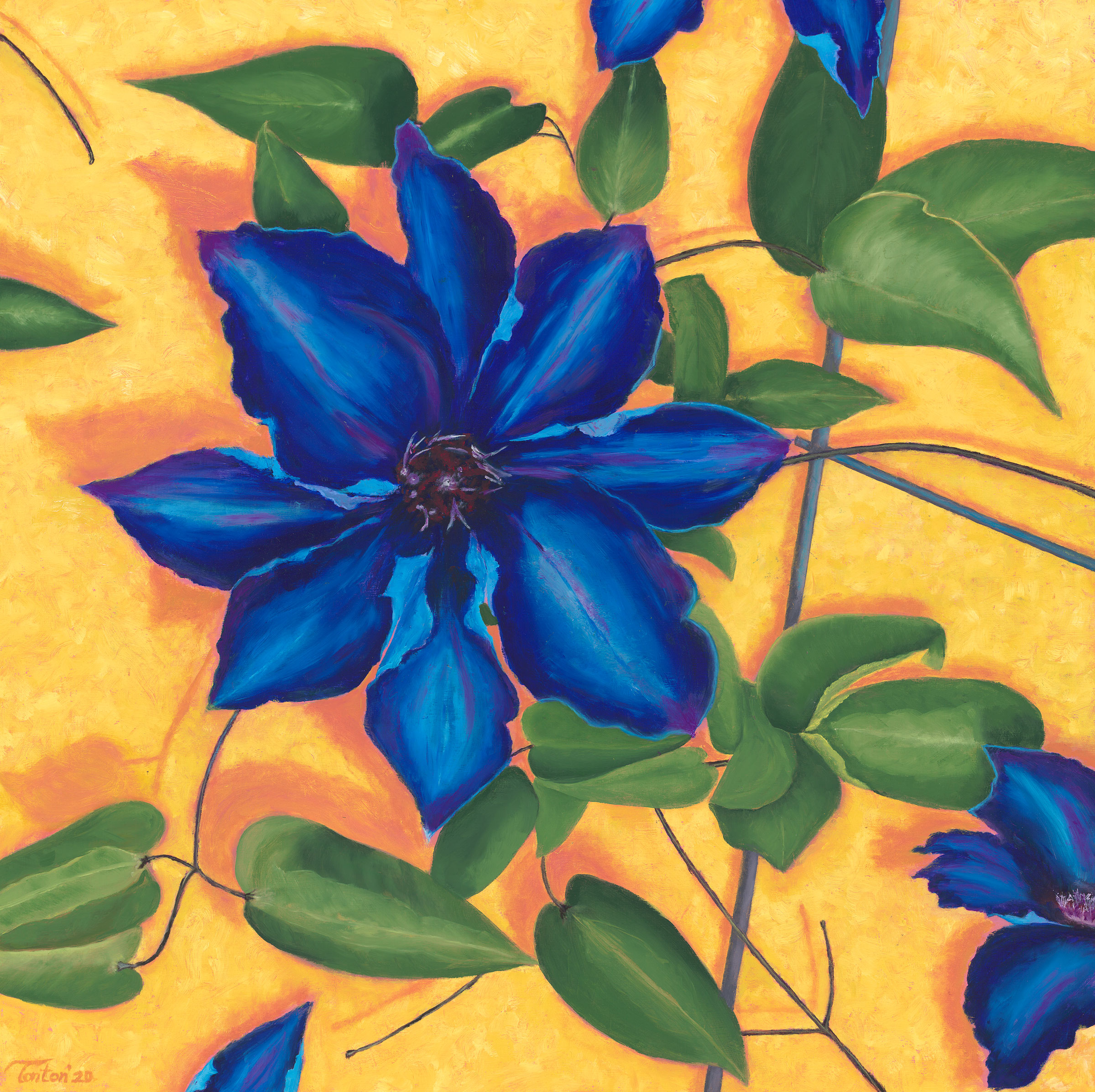 """Clematis in Oil; Giclee 24""""x24"""""""